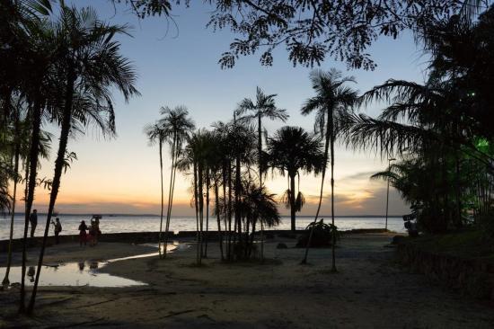 Manaus 27