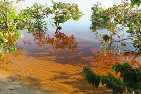 Manaus 7