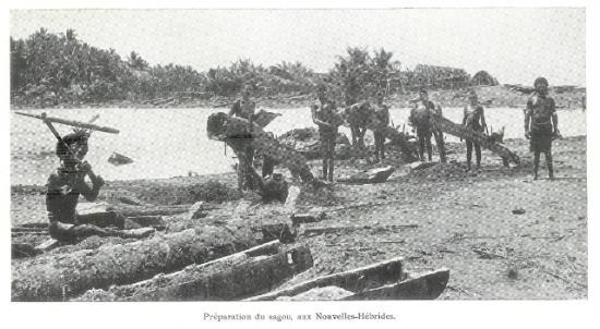 Préparation du sagou aux Nouvelles-Hébrides