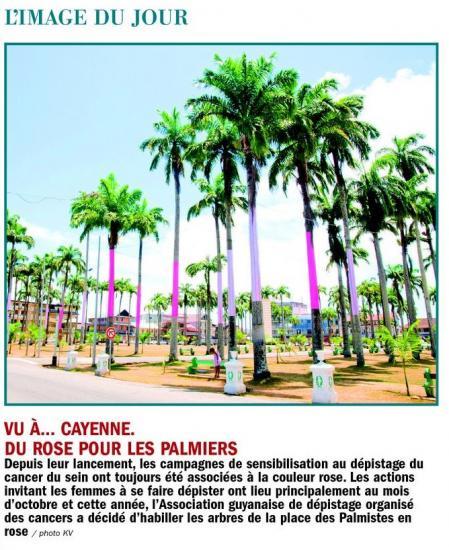 Les palmistes contre le cancer du sein à Cayenne.jpg